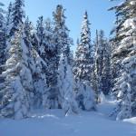 Północno-Wschodnia Syberia