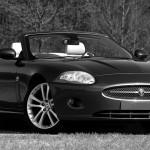 Segmenty rynkowe samochodów